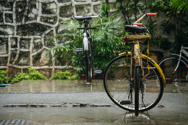 Bicycles of Mumbai Land Vehicle Wall - Building Feature Rain Travel Wheel City Wall Wet Mode Of Transportation No People Day Transportation Water Bicycle Mumbai India Plant Stationary