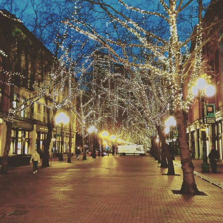 Pioneer square Tree Sky Outdoors Seattle Pioneer Square December 2016 Architecture Travel Destinations