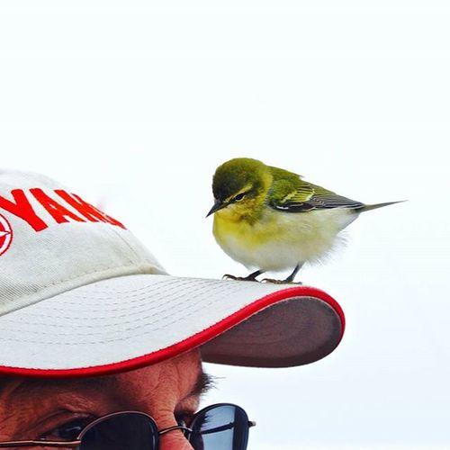 Howdy. Birdistheword