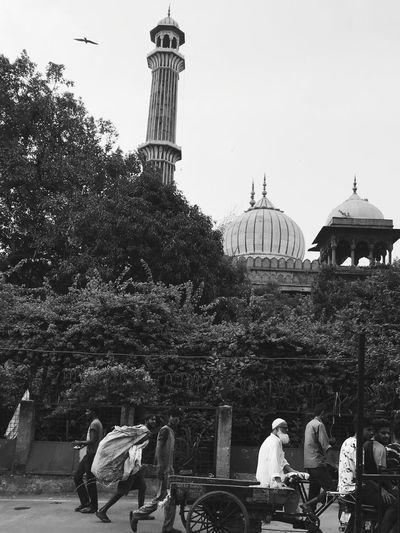 Streets Of Delhi Delhi JAMA MASID Architecture Built Structure Building Exterior Group Of People Men Religion Real People Tree Sky Women Dome Plant Nature Belief Spirituality Travel Destinations Day Crowd Adult