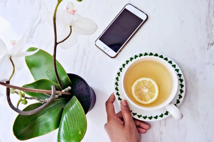 Honey lemon drink Honey Lemon Honey Lemon Drink Smart Phone Orchid Visual Feast