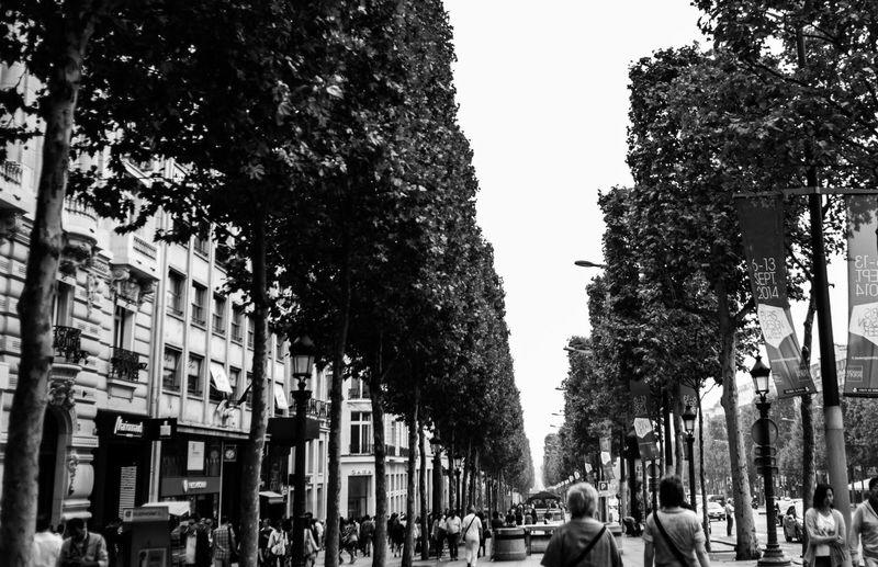 People walking on street in city against clear sky