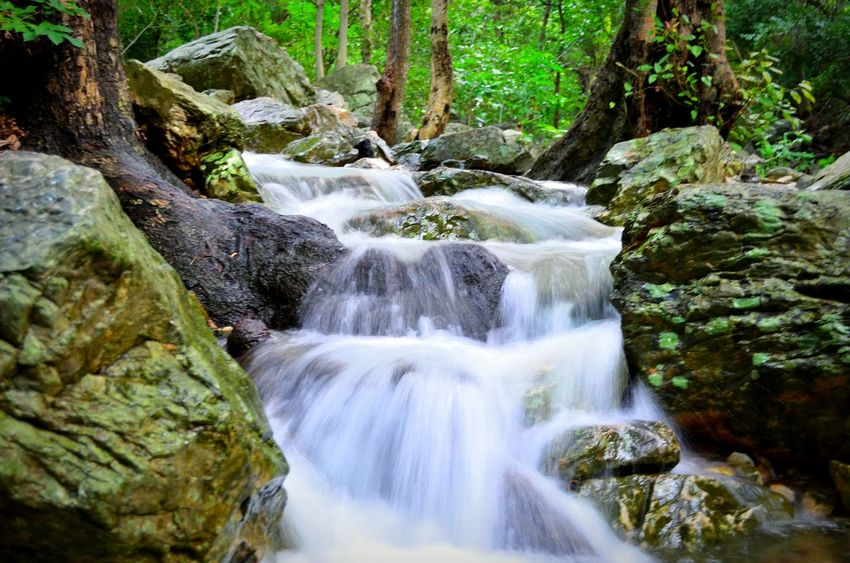 Waterfalls Stream In The Forest Trekking Tada NiceShot Forest Nice Pic