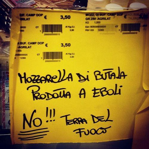Cartello trovato in un negozio a San Giovanni in Persiceto. GraziE Camorra grazie Cittadini omertosi grazie politici d.m. per distruggere il futuro di una terra nobile.
