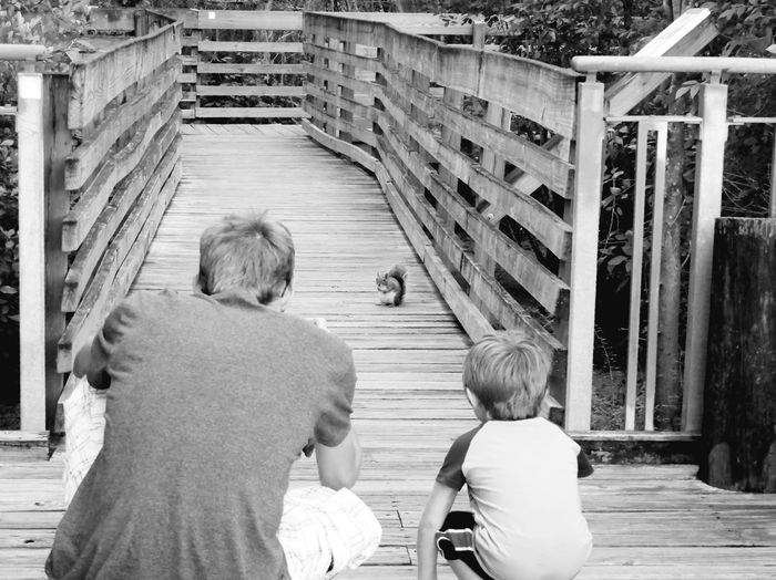 Rear view of father and son looking at squirrel on bridge