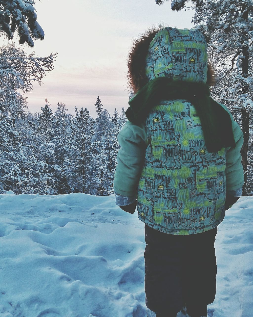 winter, snow, rear view, cold temperature, real people, one person, standing, weather, three quarter length, leisure activity, nature, warm clothing, lifestyles, day, outdoors, field, beauty in nature, women, tree, full length, sky, people