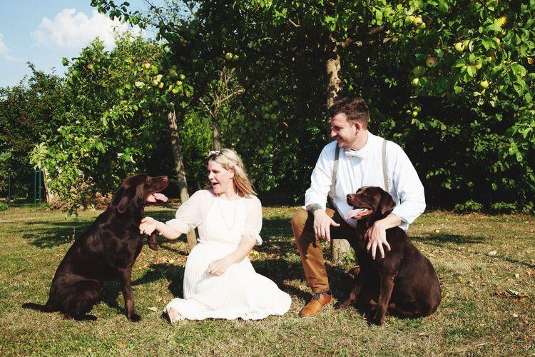 Leben Menschen Hochzeit Sommergefühle Draußen Natur Liebe Labrador Love Get Married Pets Dog Lifestyles Nature #NotYourCliche Love Letter My Best Photo