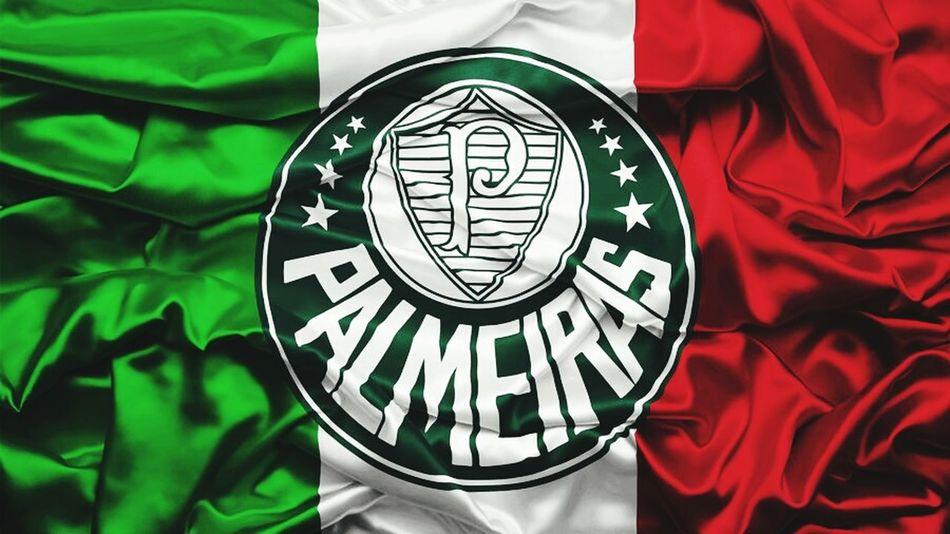 Champion Brazil Football 2016😍 Night Campeones Campeao Palmeirasminhavida Palmeiras People Likeforlike Photooftheday Like4follow Likes4likes Like4like Likeforfollow Likeforlikealways World