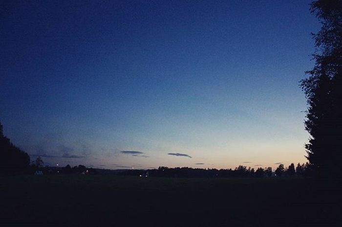 Последняя ночь в Норвегии. С одной стороны это поле, с другой лесопосадка, за которой аэропорт, а между ними мы в палатках. норвегия аэропорт пейзаж Norway Sandefjord Landscape Norwegian