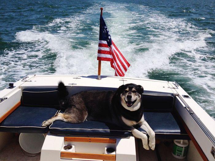 Alvi- loves boating
