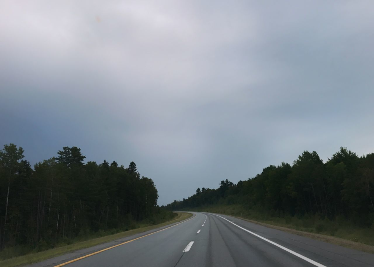road, the way forward, transportation, tree, nature, no people, sky, day, tranquility, scenics, outdoors, landscape, beauty in nature