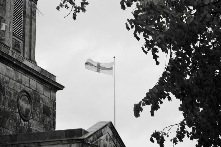 Architecture Branch Building Exterior Built Structure Day Flag Low Angle View Nature No People Outdoors Sky St George Tree