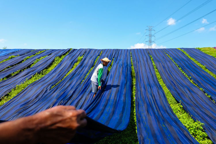 Man drying blue fabrics on grassy field against blue sky during sunny day