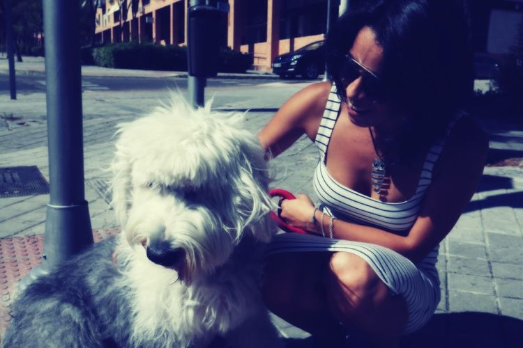 EyeEm Selects Pets Sitting Young Women Dog Women Wireless Technology Technology