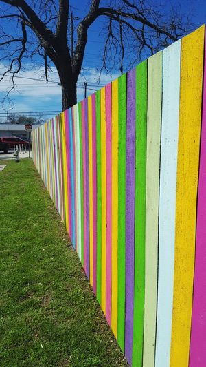 Rainbows in Austin Rainbow Colors Colorful Fence Austin Austin Texas Gay Tree Multi Colored Field Agriculture Grass Sky Picket Fence