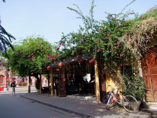 Cafe Bicycle Building Exterior Built Structure Cafe Clear Sky Colourful Composition Day Flowering Bushes Flowers Growth Hoi An House Incidental People Outdoors Pretty Quaint  Shadow Street Sunlight Tourim Tourist Attraction  Tree Vintage
