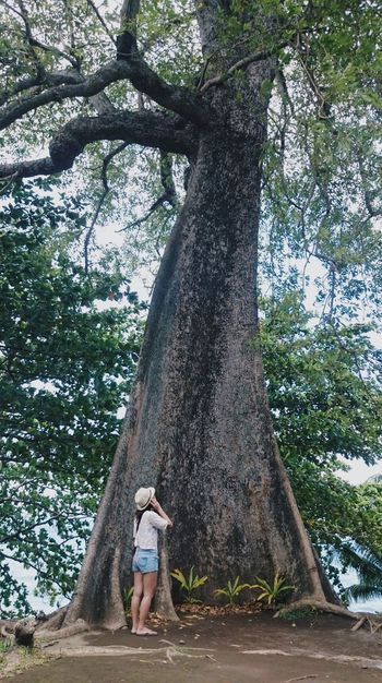 I wonder! Tree Full Length Tree Trunk Leisure Activity One Person Lifestyles Branch Nature Outdoors People Adults Only Climbing Day One Woman Only Sky Young Adult Adult