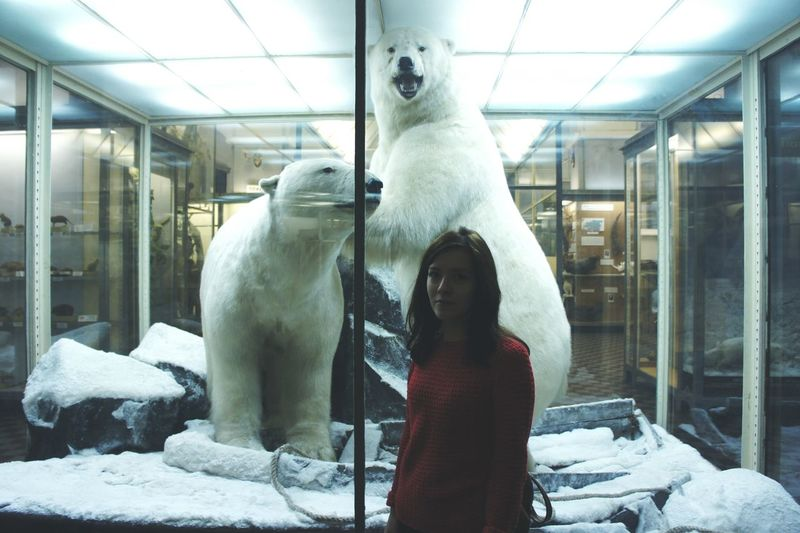 Санкт-Петербург Питер музей зоопарк зоологический музей белые медведи север Everyday Joy