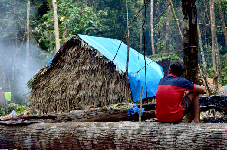 aborigines house Day Forest Land Leisure Activity Lifestyles Men Nature One Person Outdoors Plant Protection Rain Real People Rear View Sitting Tree Waist Up Water