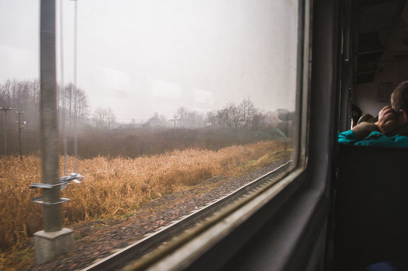 Window Looking Through Window Autumn Railroad Track Cold Temperature Day Tree Sky InMotion Train Train Tracks