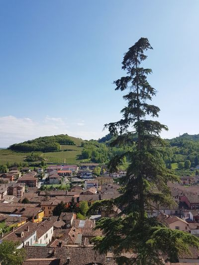 Tree No People Growth Sky Scenics Landscape Langhe Piedmont Italy Vacations Travel Destinations Outdoors Roofs Of Houses
