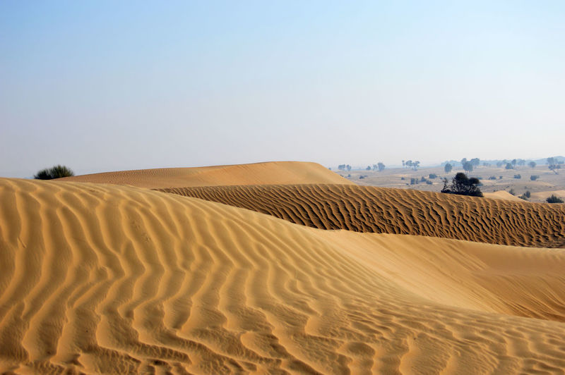 Arid Climate Beauty In Nature Blue Calm Clear Sky Desert Landscape Natural Pattern Nature No People Outdoors Remote Rippled Sand Sand Dune Scenics Solitude Tranquil Scene Tranquility Travel Wave Pattern