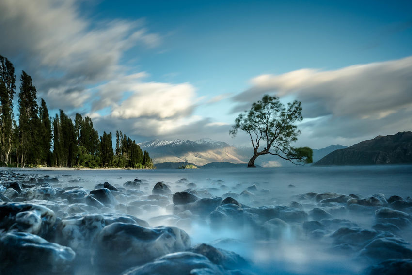 Beauty In Nature Calm Cloud Cloud - Sky Coastline Day Nature New Zealand No People Non-urban Scene Ocean Outdoors Remote Scenics Sea Shore Sky Solitude Surface Level Tranquil Scene Tranquility Tree Wanaka Wanakalake Water