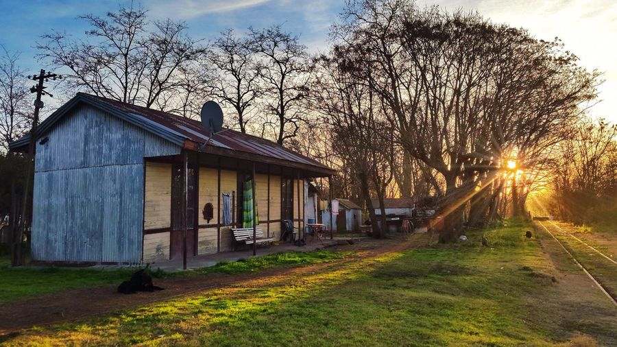 Sunset in Tomás Jofré, prov. de Buenos Aires, Argentina. Sunset Sunset_collection Outdoors Tranquility Tranquil Scene Relaxing Country Country House Trees Grass Railway Railway Station Train Station Train Tracks Country Life Countryside