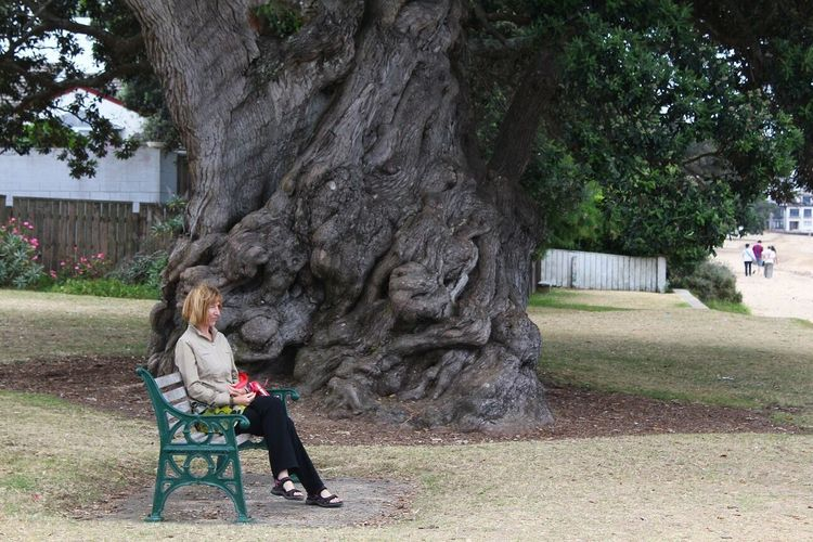 Full length of woman looking away while relaxing on bench by tree at park