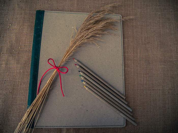 High angle view of book and pencil with stalk on table