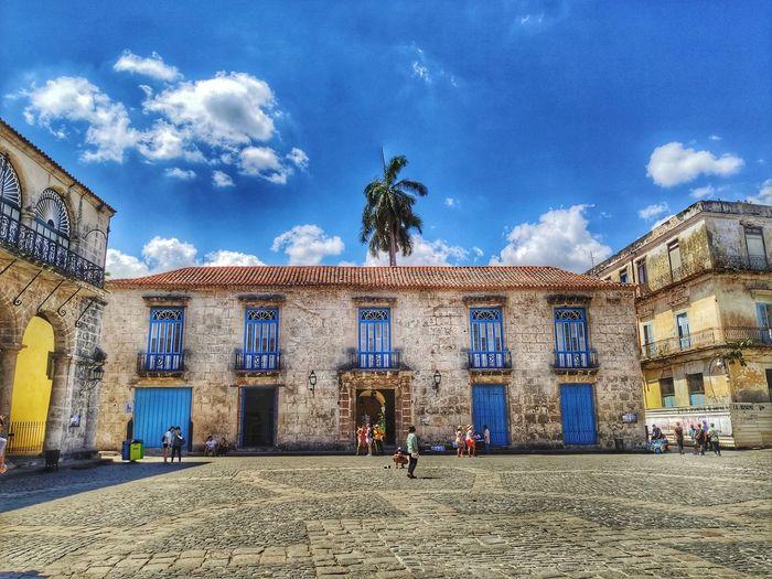 Havana still