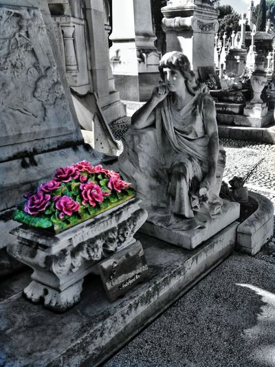 Statue Sculpture No People Human Representation Religion Flower Day Architecture Outdoors Monument Cemetery Photography Cemetery Art  Bnw_of_our_world Cemetery_shots Graveyardphotography Cemetery Art  Bnw_universe Graveyardbeauty Sepulture Statues And Monuments Marseille, France Statue Memorial