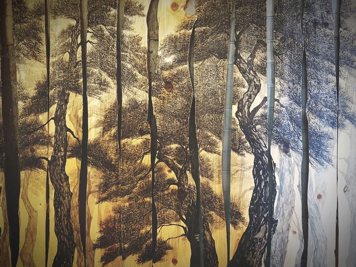 Full Frame Backgrounds Pattern Textured  Close-up Window Day Outdoors No People Nature Beauty In Nature Growth Check This Out Taking Photos Eyem Nature Lover Tree Wood Wood Art