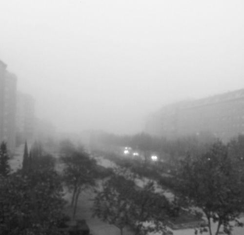 Frio y Niebla Dia Perfecto