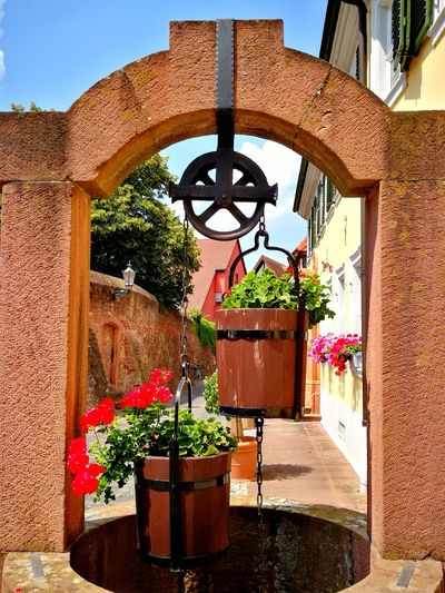 Public Fountain Brunnen Ziehbrunnen Historisch Historical Water Reservoir Altstadt Flower Potted Plant Hanging Architecture Plant Built Structure Flower Pot