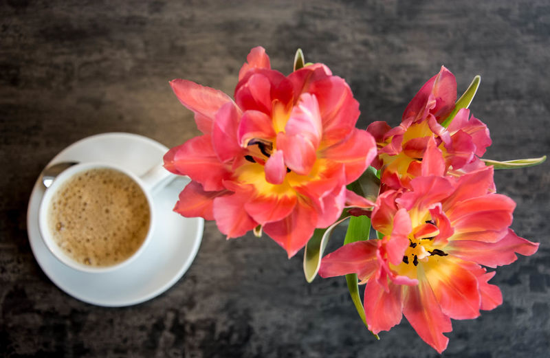 coffee by friends, good morning world.. Blossom Blumen Blurred Motion Coffee Coffee Time Colorful Contrast Enjoying Life Eye4photography  Flower Flowers Focus On Foreground Fresh Freshness Good Morning Kaffee Morning No People Open Edit Pattern Pattern Pieces Sunday Sunday Moods Taking Photos Pastel Power