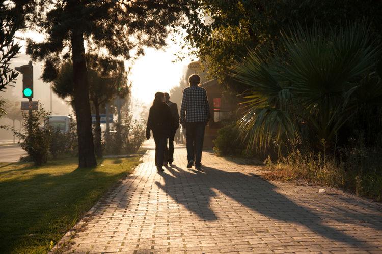 Full Length Rear View Of Friends Walking On Footpath In Park