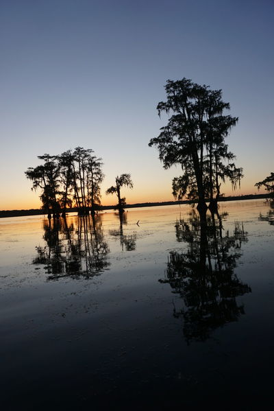Water Reflection Nature Sunset Travel Landscape Tree Sky Vacations Lake Outdoors Scenics Tranquility Horizon Over Water No People Nature Photography Swamp Traveling Texan Trip Travel Photography Sonyimages Sony A6000 Noedit Nofilter Roadtrip