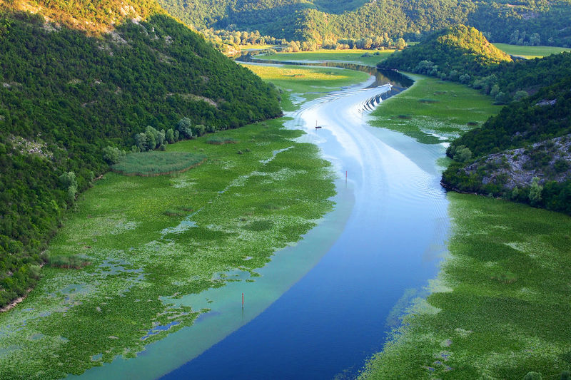 Beauty In Nature Day Green Color Lake Landscape Meander Montenegro Montenegro Landsca Montenegro Wild Beauty Mountain Nature No People Outdoors Rijeka Crnojevica Rijeka Crnojevica River River Scenics Sky Tranquil Scene Tree Water