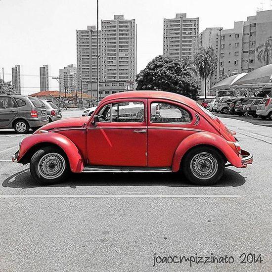 VW Fusca Beetle Total_blackred Foto_blackred Foto_blackwhite Ig_contrast_bnw Amateurs_bnw Bnwmood Bnw_kings Bnw_planet Bnw_captures Top_bnw Bnw_lombardia Instapicten Top_bnw_photo Bnw_life_shots Colorsplash Splashcolors Colorsplash_dr Monumentalsplash Splashmood
