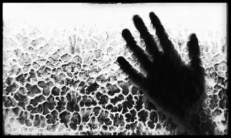 Blackandwhitephotography SocialDocumentary Monochrome Lensculture