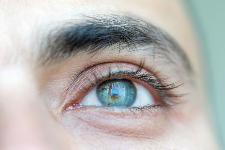 Close up on a blue eye of a man, human eye