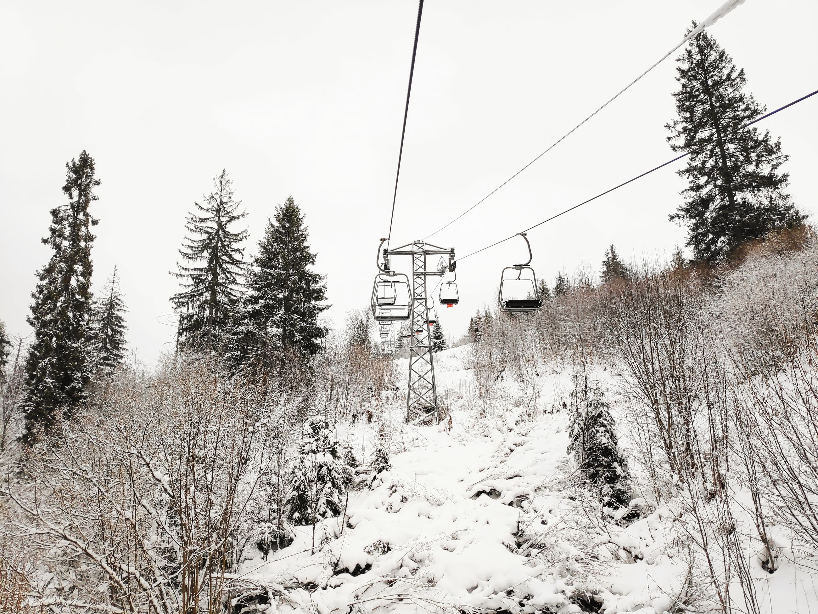 snow, winter, cold temperature, tree, transportation, plant, nature, cable, land, covering, day, mode of transportation, sky, no people, white color, scenics - nature, field, cable car, beauty in nature, electricity, outdoors, track, snowcapped mountain