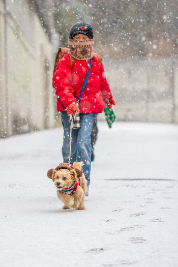 Person Walking With Dog During Snowfall