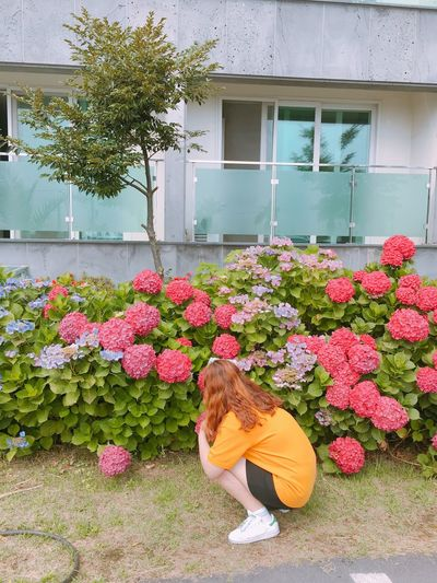 100 Days Of Summer JEJU ISLAND  Flower Building Exterior Outdoors Day Architecture Built Structure Nature Plant Growth Childhood One Person Child Fragility Beauty In Nature Children Only Freshness Flower Head People Me Hydrangea Colorful Mustard Mustardyellow