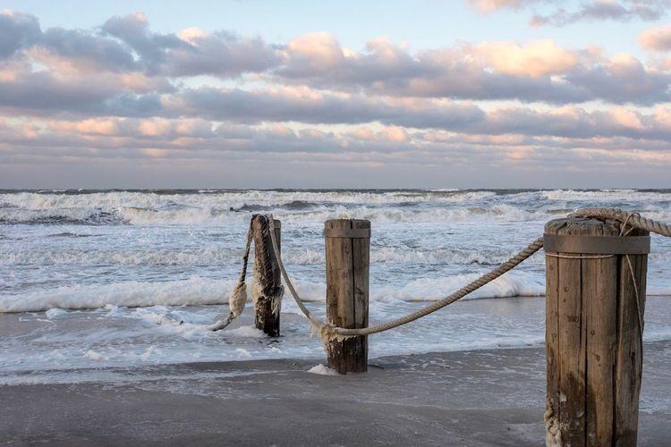 Sky Sea Wood -