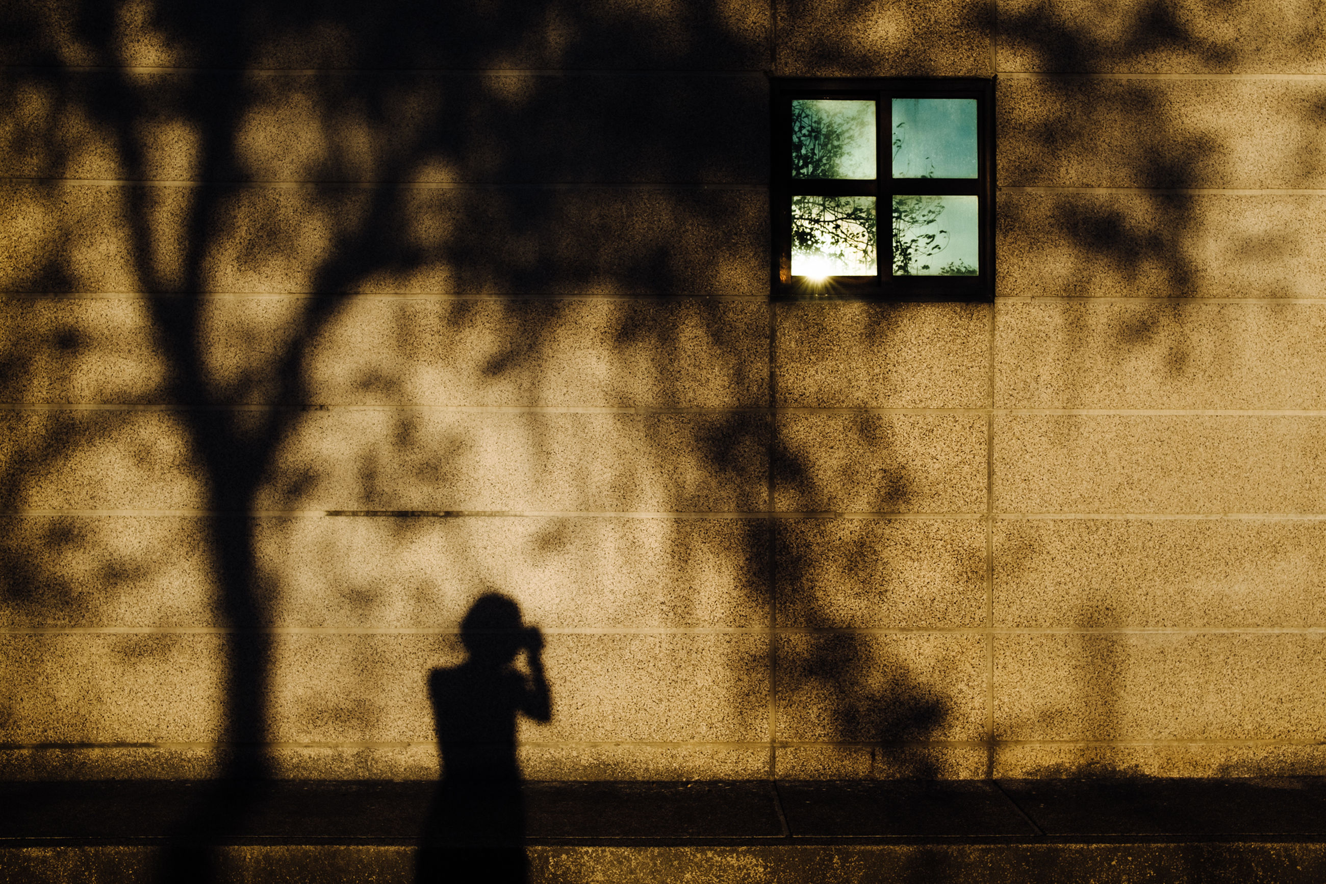 shadow, window, architecture, day, one person, building exterior, outdoors, sunlight, built structure, real people, city, people