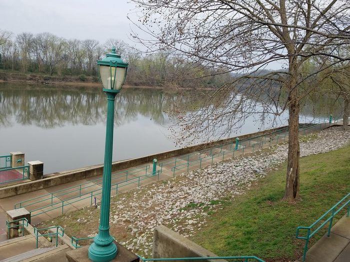 Water Pole Tree