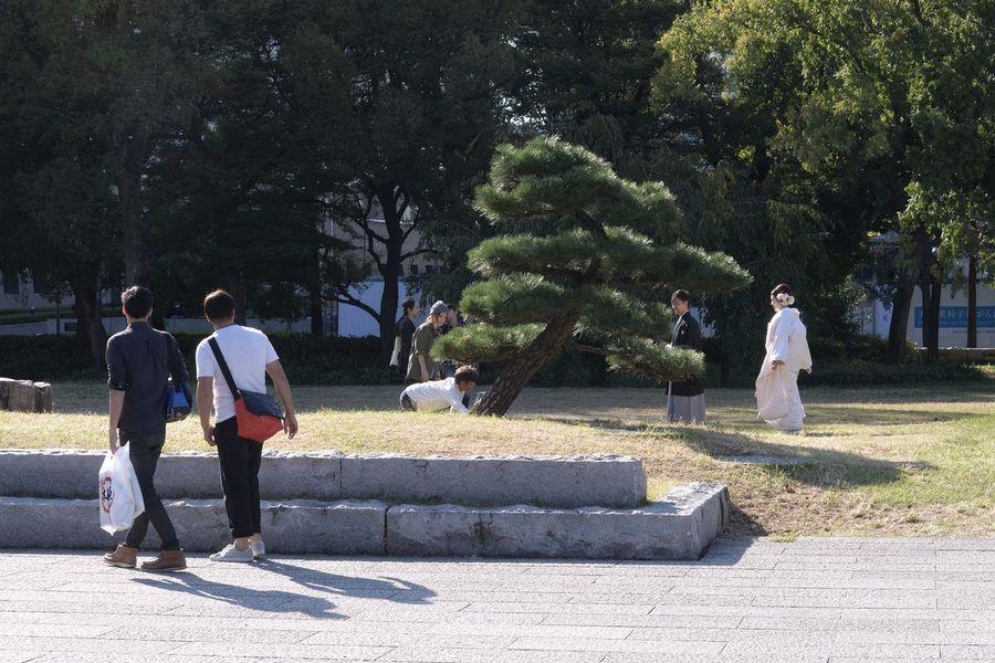 大阪城公園で。新郎新婦 和服 着物(Kimono) 記念撮影 Bride And Groom In The Park Japanese Traditional Kimono Traditional Costume Taking Photos Capture The Moment People Watching From My Point Of View Looking People OSAKA Travel Photography