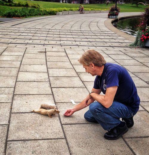 Full Length Of Man Feeding A Squirrel